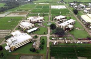 Aerial photo of IRRI.