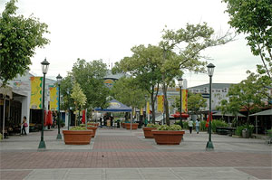 Photo of the open-air ambiance of Paseo de Sta. Rosa