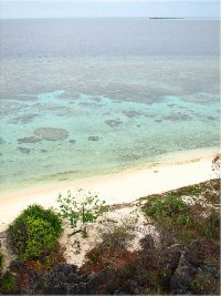 View from Apo Island
